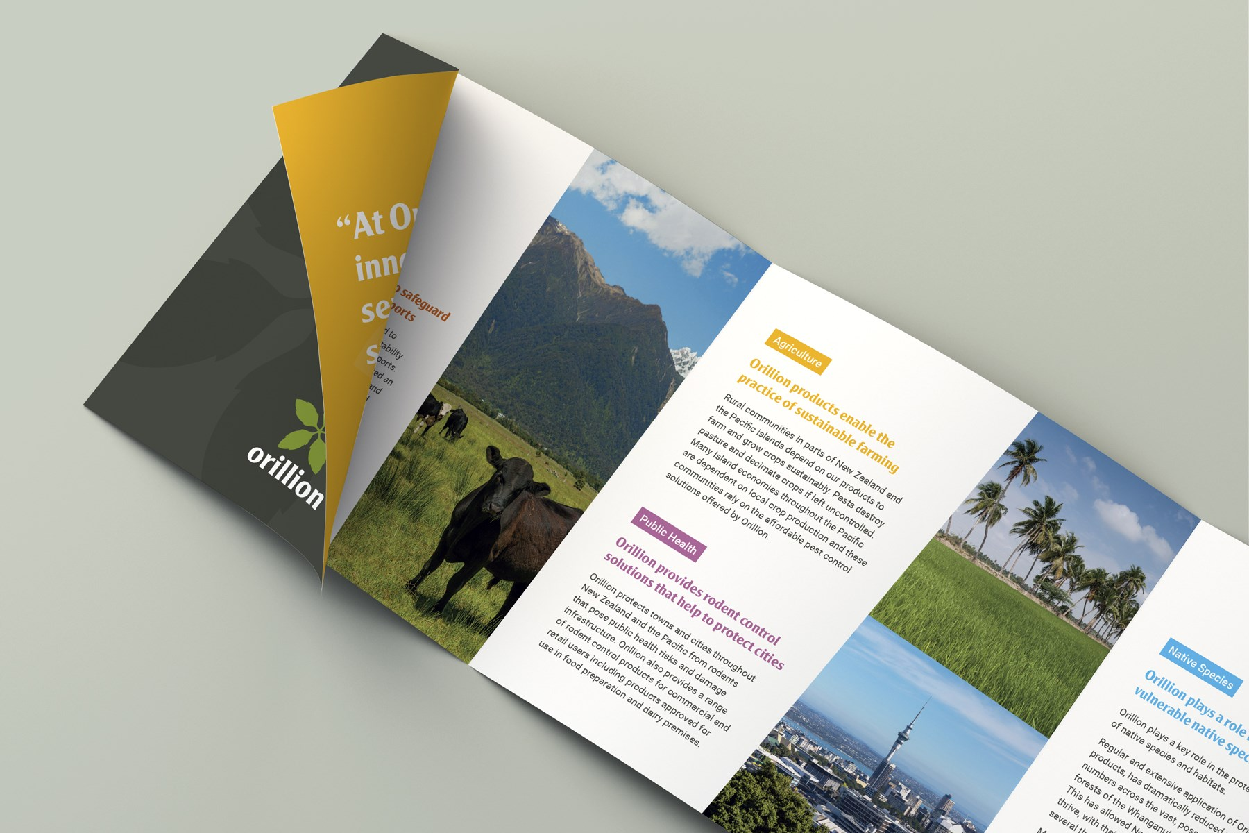 Orillion-Square4-Fold-Brochure03.jpg